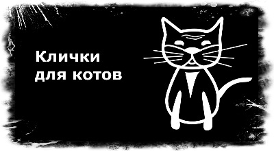 имена для котов мальчиков