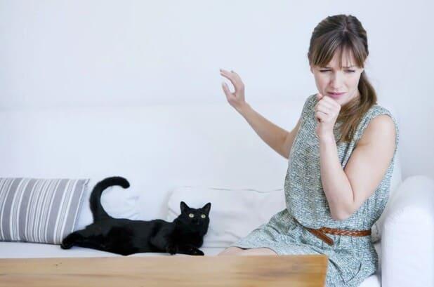 Аллергия на кошек у взрослого