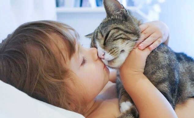 Лишай от кошки у ребёнка