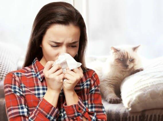 симптомы аллергии у взрослых